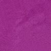CL 22 // African Violet
